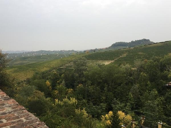 Barolo topography