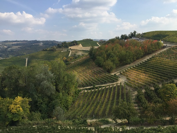 Ettore Germano tasting room balcony view