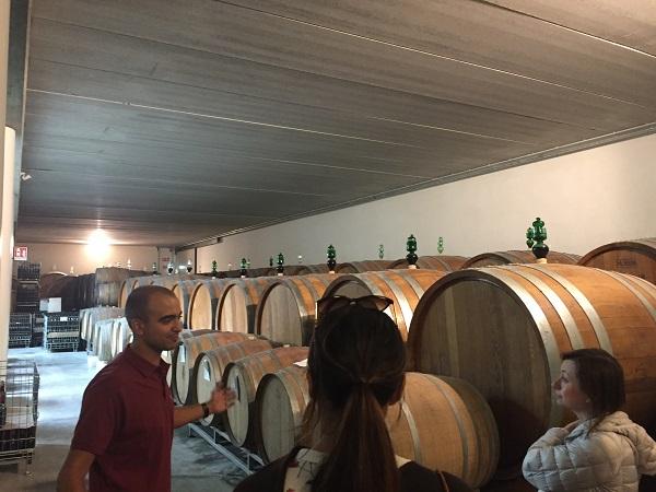 Vajra cellars