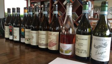 G. D. Vajra: renowned Barolo estate now with Luigi Baudana wines