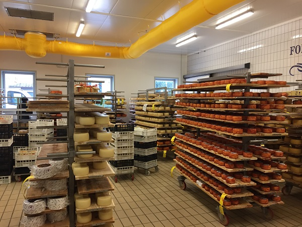 Busti cheese range