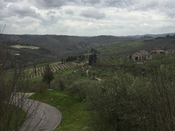 Classi Chianti Classico hills