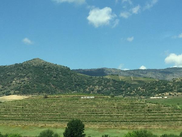 View to Meão across Douro