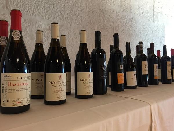 Douro wine tasting