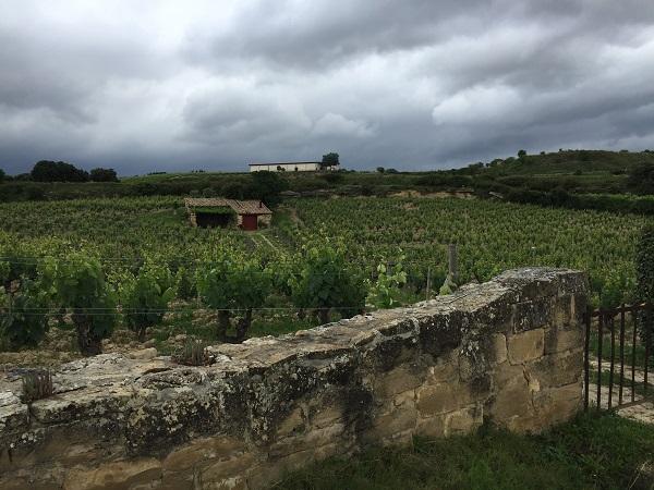 Clos walls of El Pison