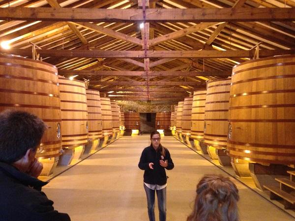 CVNE French oak vat room