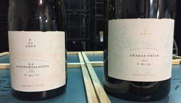 Pujanza: classy, boutique, new wave Rioja