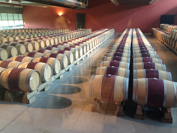 Malolactic barrel room