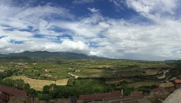 Rioja: Spain's classic region is changing