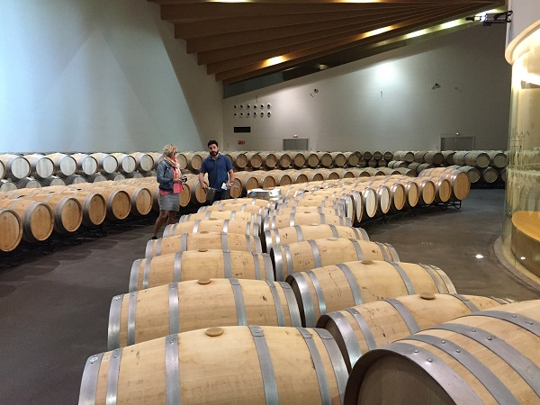 Ysios barrel room