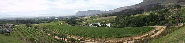 Klein Constantia panorama