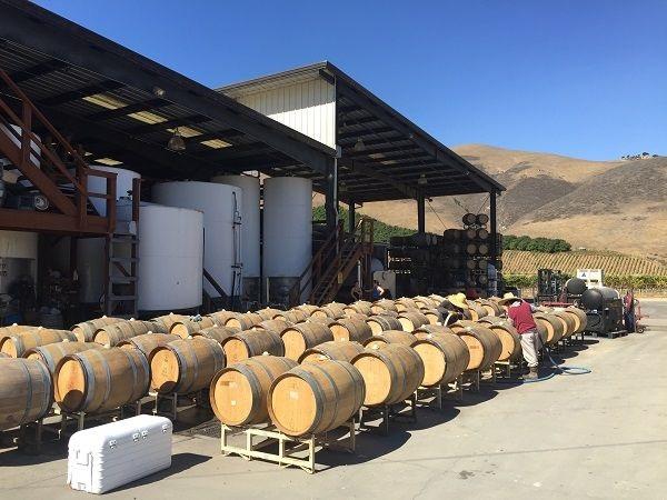 Au Bon Climat winery barrel filling
