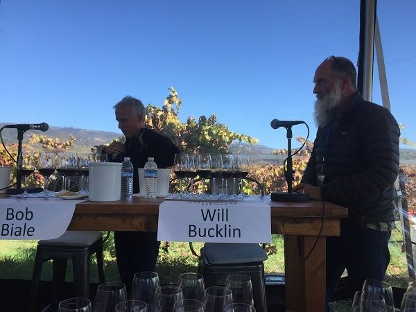 Will Bucklin winemaker