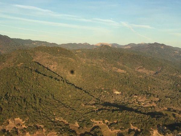 Mayacamas forests