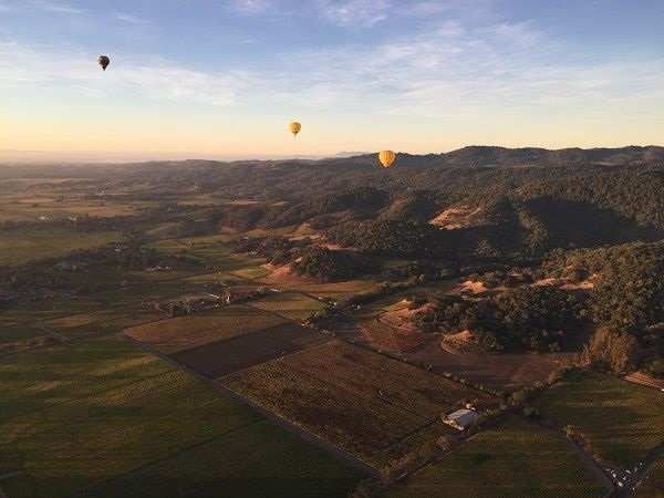 Mayacamas view to Carneros