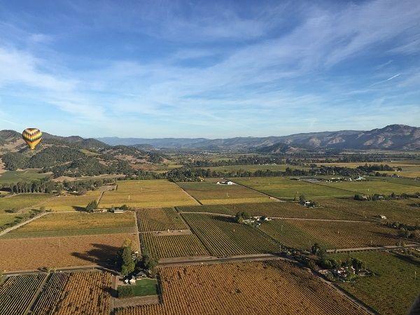 Napa Valley benchlands