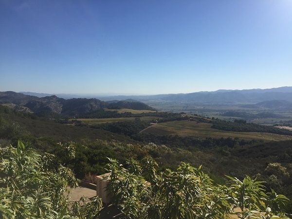 OVID winery view Pritchard Hill Napa Valley