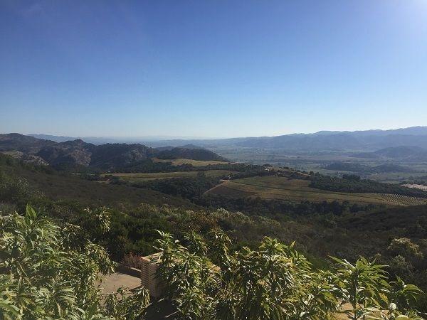 OVID winery view Pritchard Hill Napa Valley