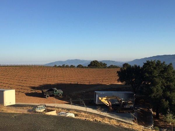 Monte Bello altitude vineyard