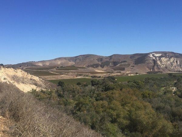 Santa Rita Hills Santa Ynez River valley
