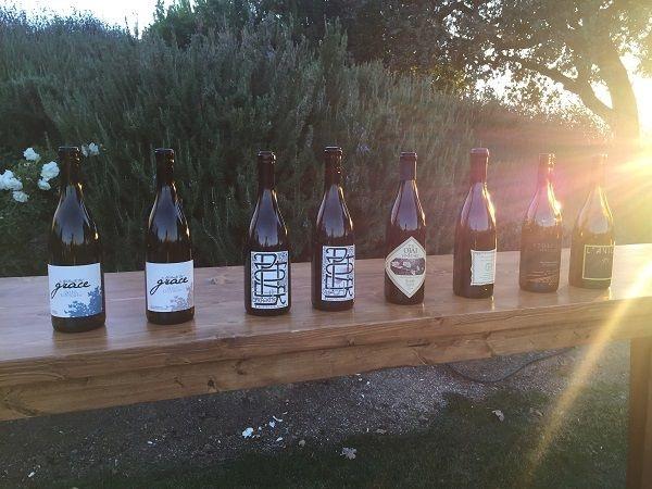 Stolpman Rhone masterclass wines