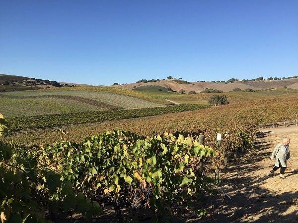 Santa Barbara County wine lands
