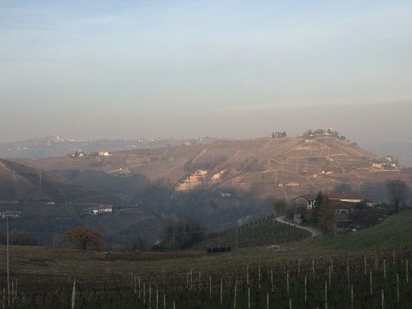 Asti hillside vineyards at altitude