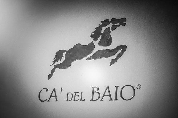 Ca' del Baio horse logo