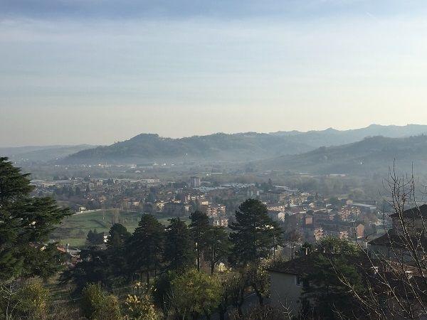 Canelli Moscato d'Asti hills