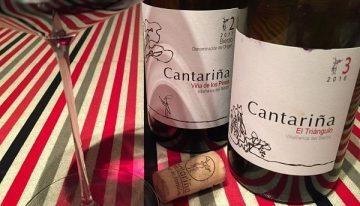 Cantariña, Bierzo: Finance to fine wine