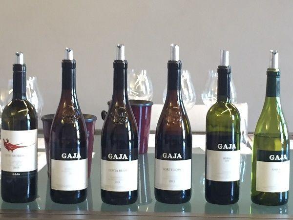 Gaja Barbaresco, Barolo, Chardonnay