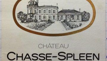 751. Château Chasse-Spleen, Cru Bourgeois Moulis en Médoc, 2007